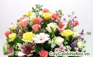 hoa cảnh chúc mừng 2