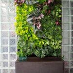 tường cây giả - cây cảnh cho thuê